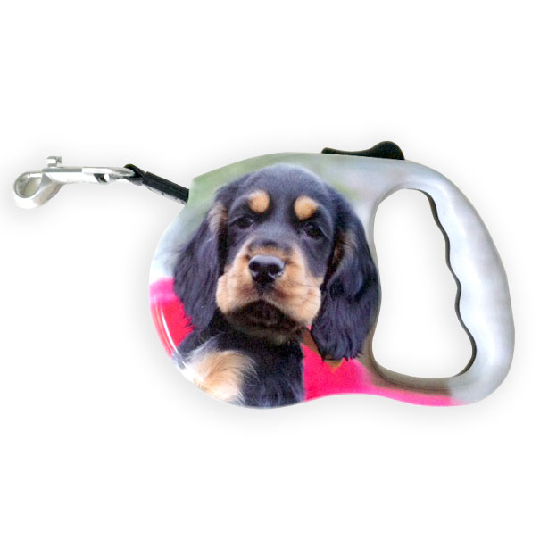 Personalised-dog-lead